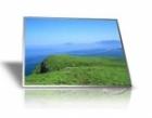 MÀN HÌNH Laptop 12.1 INCH LED HP DV2, DV2T,CQ20, CQ25, 2510T, 2710T, N121I6-L01